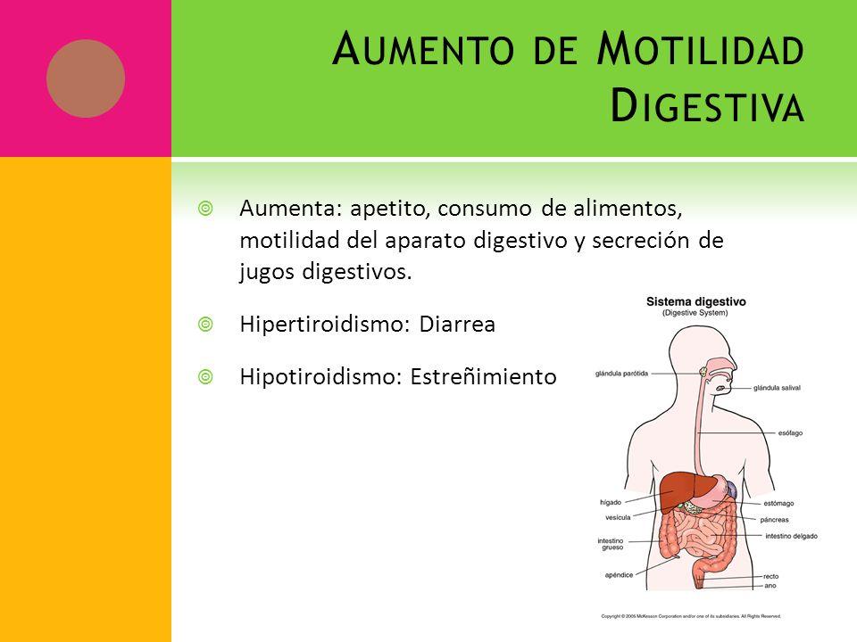 A UMENTO DE M OTILIDAD D IGESTIVA Aumenta: apetito, consumo de alimentos, motilidad del aparato digestivo y secreción de jugos digestivos. Hipertiroid
