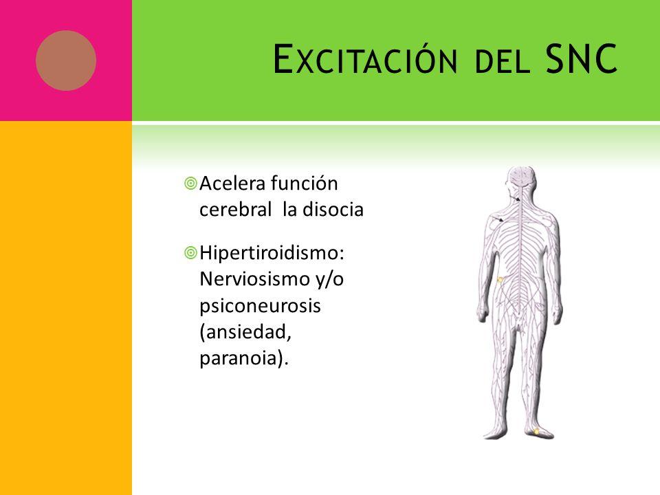 E XCITACIÓN DEL SNC Acelera función cerebral la disocia Hipertiroidismo: Nerviosismo y/o psiconeurosis (ansiedad, paranoia).