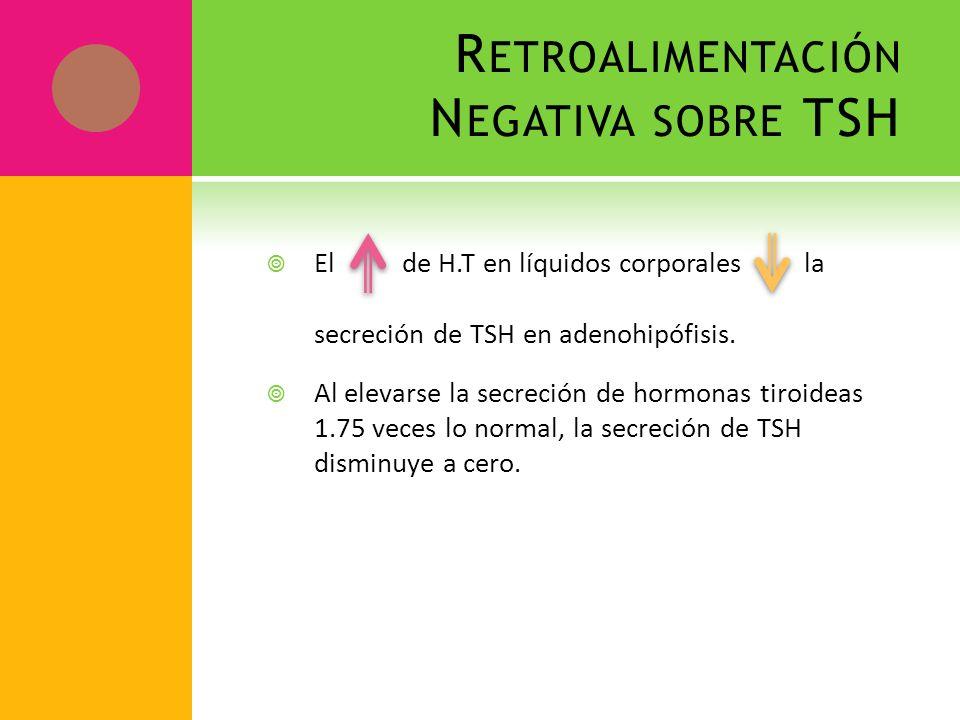 R ETROALIMENTACIÓN N EGATIVA SOBRE TSH El de H.T en líquidos corporales la secreción de TSH en adenohipófisis. Al elevarse la secreción de hormonas ti
