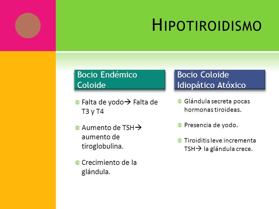 H IPOTIROIDISMO Falta de yodo Falta de T3 y T4 Aumento de TSH aumento de tiroglobulina. Crecimiento de la glándula. Glándula secreta pocas hormonas ti