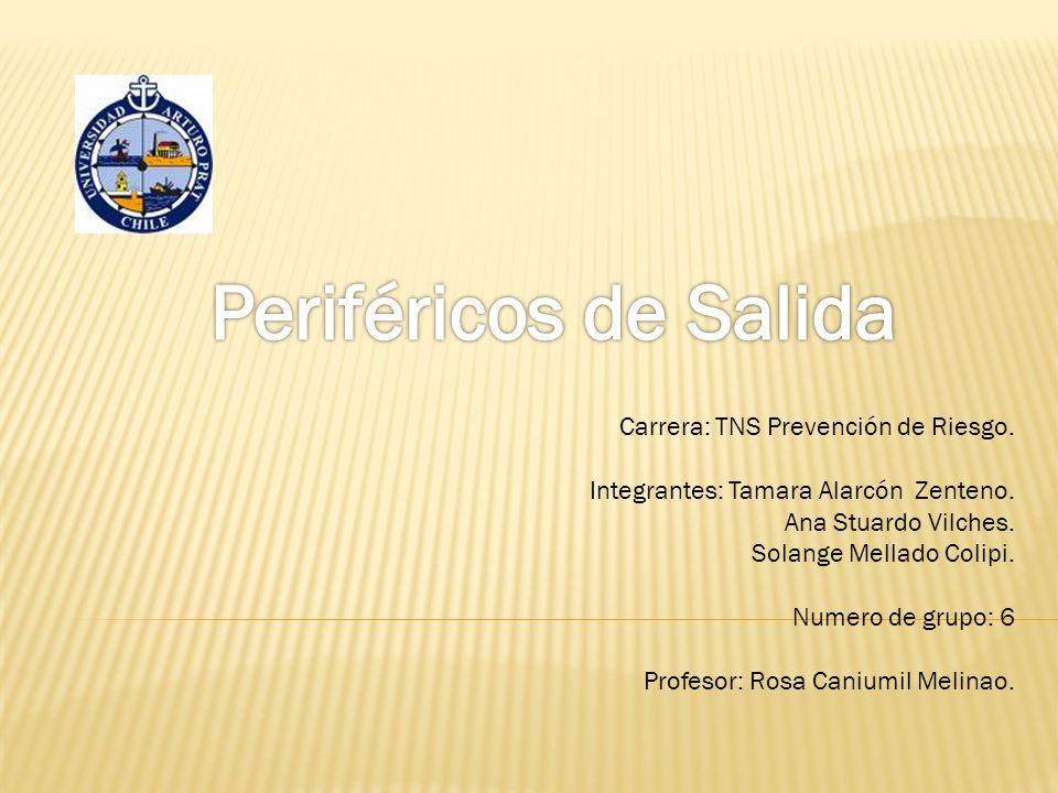 Carrera: TNS Prevención de Riesgo. Integrantes: Tamara Alarcón Zenteno.