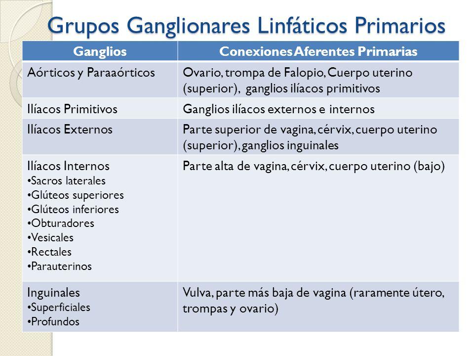 Grupos Ganglionares Linfáticos Primarios GangliosConexiones Aferentes Primarias Aórticos y ParaaórticosOvario, trompa de Falopio, Cuerpo uterino (supe