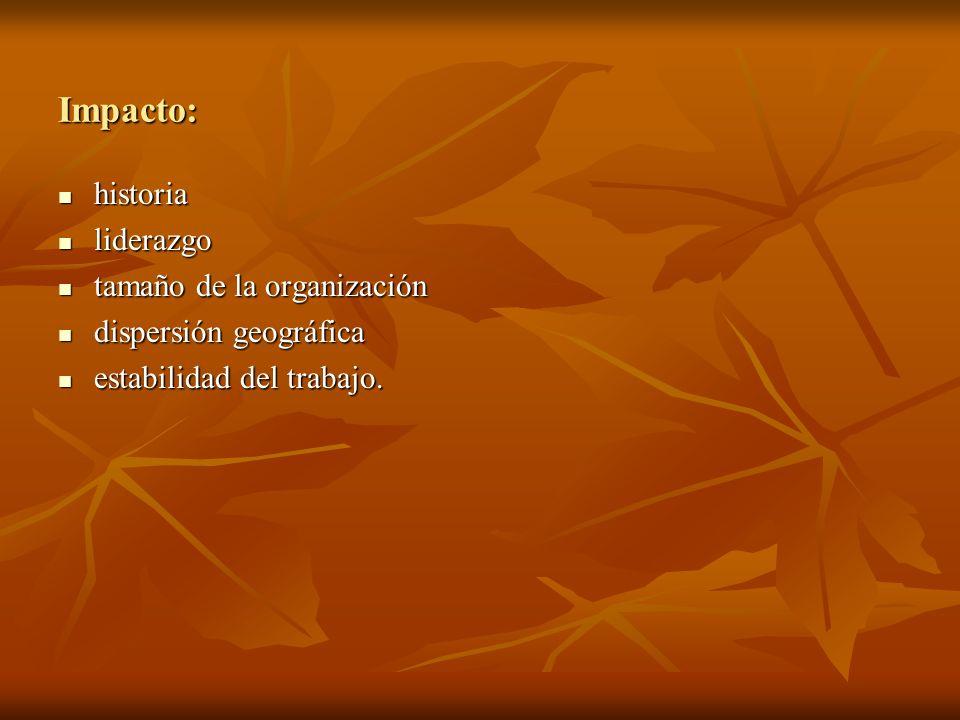 Impacto: historia historia liderazgo liderazgo tamaño de la organización tamaño de la organización dispersión geográfica dispersión geográfica estabil