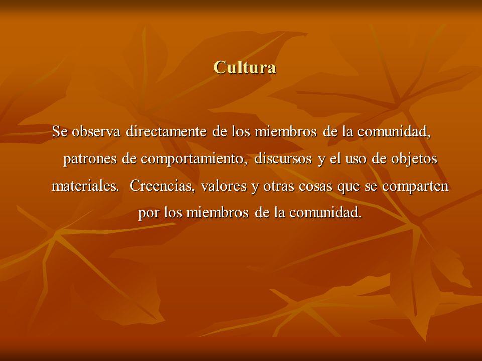 Cultura Se observa directamente de los miembros de la comunidad, patrones de comportamiento, discursos y el uso de objetos materiales. Creencias, valo