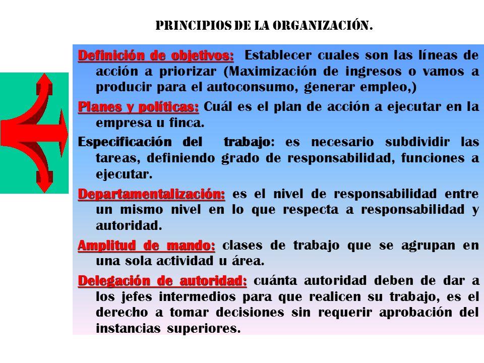 Definición de objetivos: Definición de objetivos: Establecer cuales son las líneas de acción a priorizar (Maximización de ingresos o vamos a producir