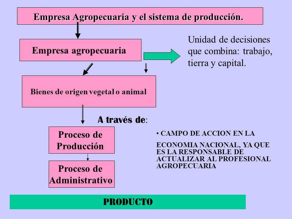 Empresa Agropecuaria y el sistema de producción. Empresa agropecuaria Bienes de origen vegetal o animal Proceso de Producción CAMPO DE ACCION EN LA EC