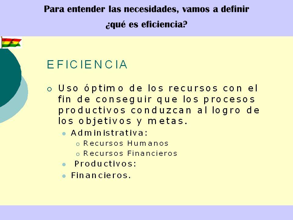 Para entender las necesidades, vamos a definir ¿qué es eficiencia?