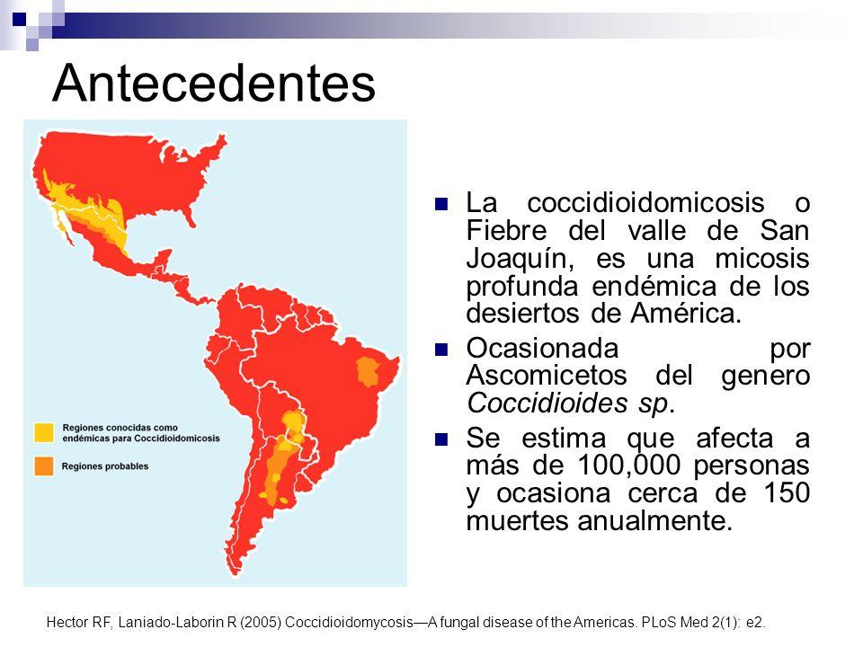 Antecedentes La coccidioidomicosis o Fiebre del valle de San Joaquín, es una micosis profunda endémica de los desiertos de América. Ocasionada por Asc