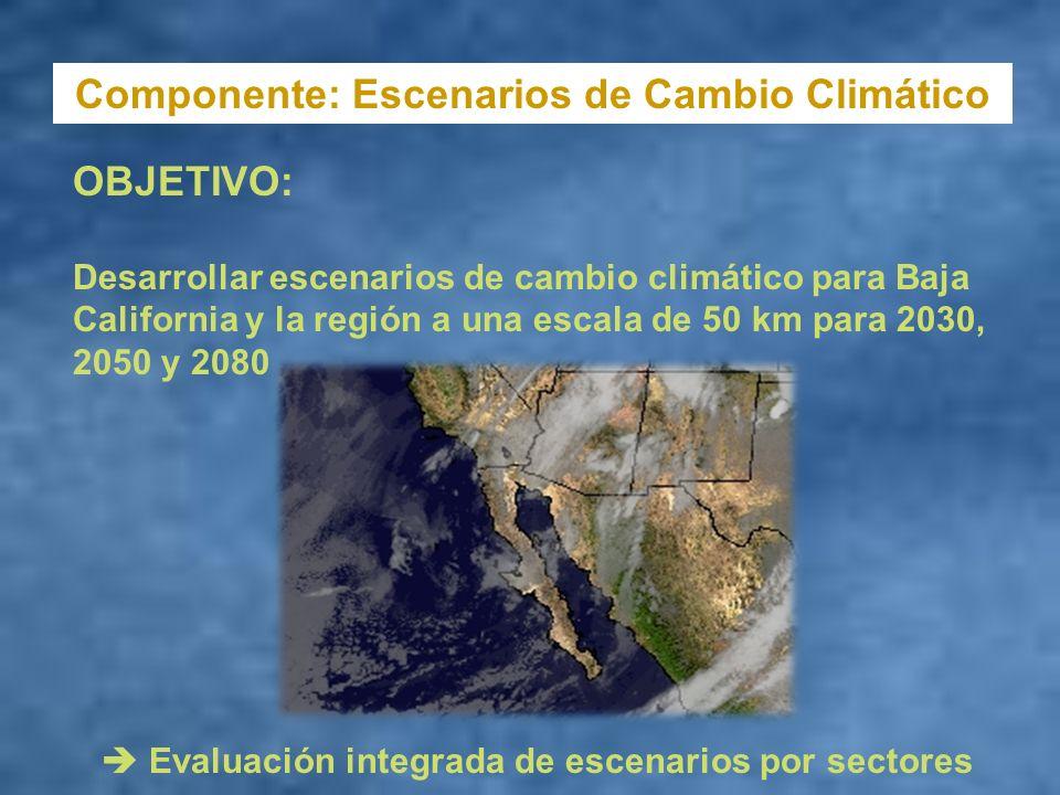 Componente: Escenarios de Cambio Climático OBJETIVO: Desarrollar escenarios de cambio climático para Baja California y la región a una escala de 50 km