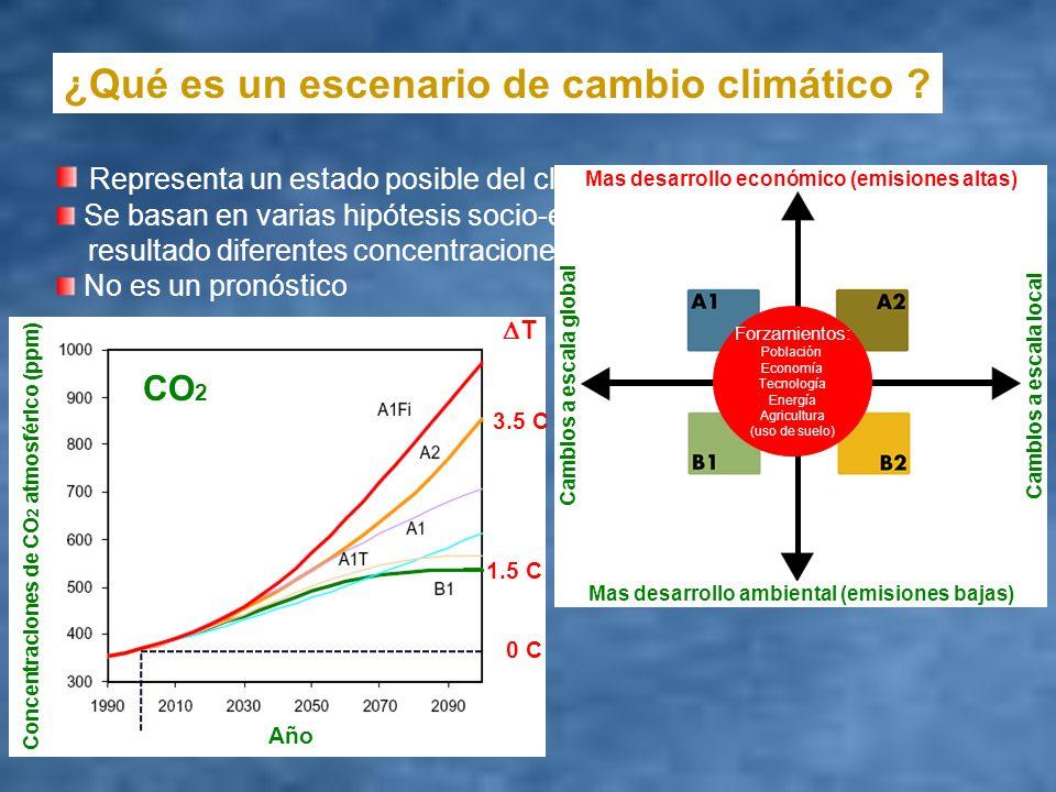 ¿Qué es un escenario de cambio climático ? Representa un estado posible del clima futuro Se basan en varias hipótesis socio-económicas que dan como re