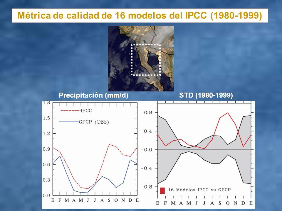 Cinco mejores modelos del IPCC en base al ciclo anual de precipitación en BC Precipitación mm/d STD (1980-1999) (OBS) GCMs IPCC --------------------- BCCR2 – NOR ECHOG – ALE MRICG – JPN HADC – UK HADG – UK