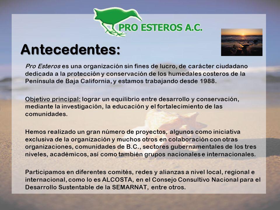 Antecedentes: Pro Esteros es una organización sin fines de lucro, de carácter ciudadano dedicada a la protección y conservación de los humedales coste