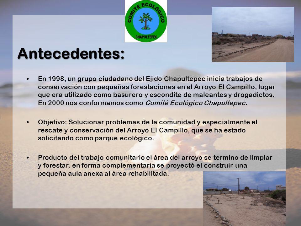 Antecedentes: En 1998, un grupo ciudadano del Ejido Chapultepec inicia trabajos de conservación con pequeñas forestaciones en el Arroyo El Campillo, l