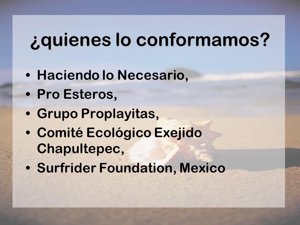 ¿quienes lo conformamos? Haciendo lo Necesario, Pro Esteros, Grupo Proplayitas, Comité Ecológico Exejido Chapultepec, Surfrider Foundation, Mexico