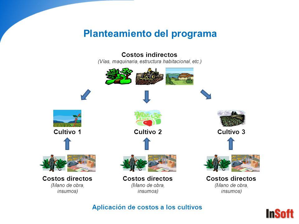 Aplicación de costos a los cultivos Planteamiento del programa Cultivo 1Cultivo 2Cultivo 3 Costos directos (Mano de obra, insumos) Costos directos (Ma