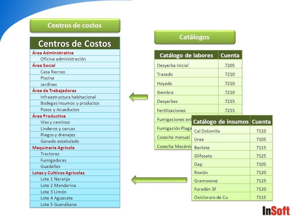 Centros de costos Catálogos