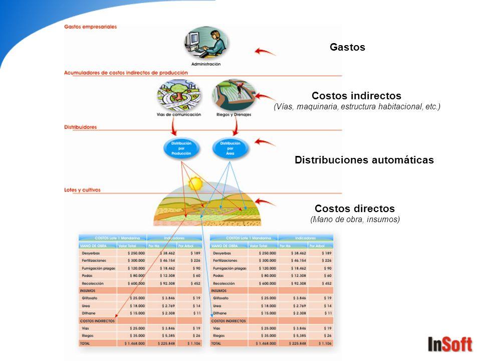 Costos directos (Mano de obra, insumos) Costos indirectos (Vías, maquinaria, estructura habitacional, etc.) Distribuciones automáticas Gastos