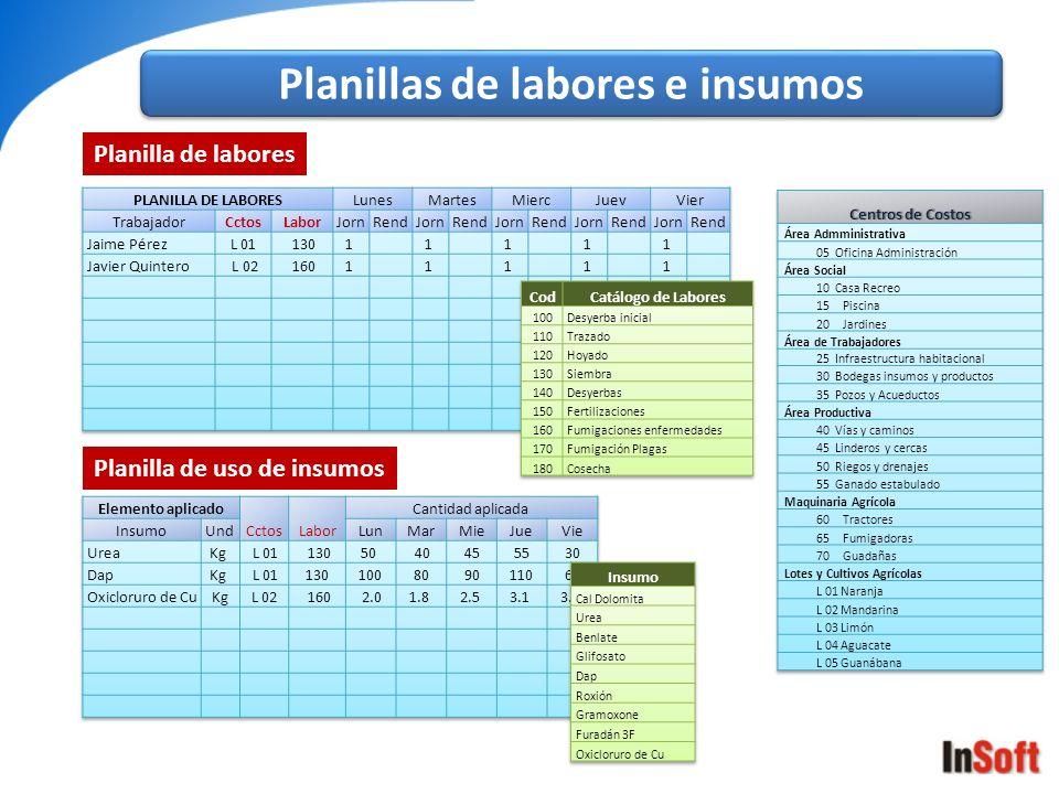 Planilla de labores Planilla de uso de insumos Planillas de labores e insumos