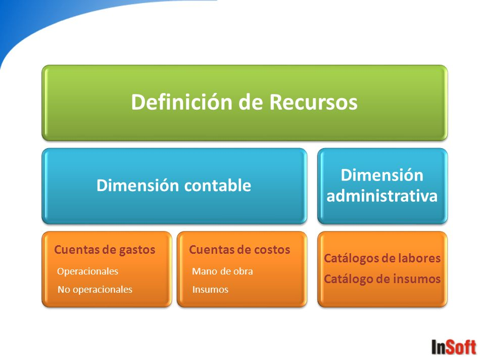 Definición de Recursos Dimensión contable Cuentas de gastos Operacionales No operacionales Cuentas de costos Mano de obra Insumos Dimensión administra