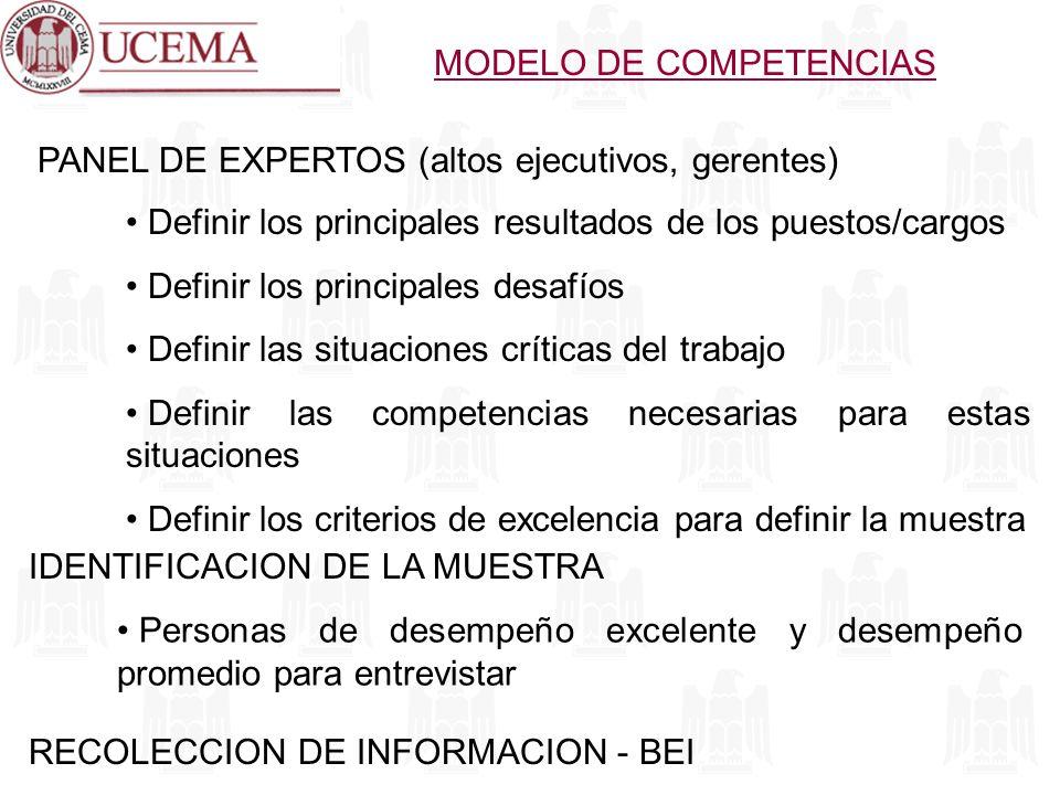 PANEL DE EXPERTOS (altos ejecutivos, gerentes) Definir los principales resultados de los puestos/cargos Definir los principales desafíos Definir las s