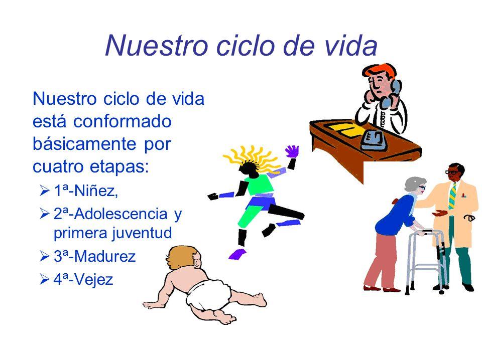 Nuestro ciclo de vida Nuestro ciclo de vida está conformado básicamente por cuatro etapas: 1ª-Niñez, 2ª-Adolescencia y primera juventud 3ª-Madurez 4ª-