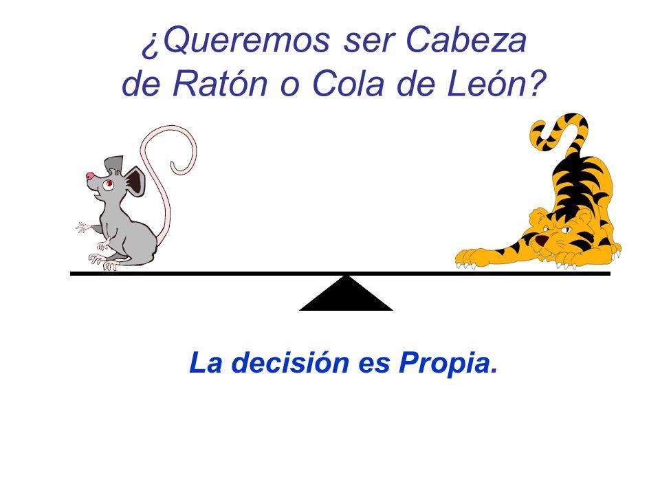 ¿Queremos ser Cabeza de Ratón o Cola de León? La decisión es Propia.