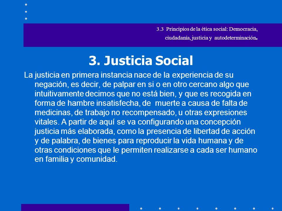 3.3 Principios de la ética social: Democracia, ciudadanía, justicia social y soberanía.