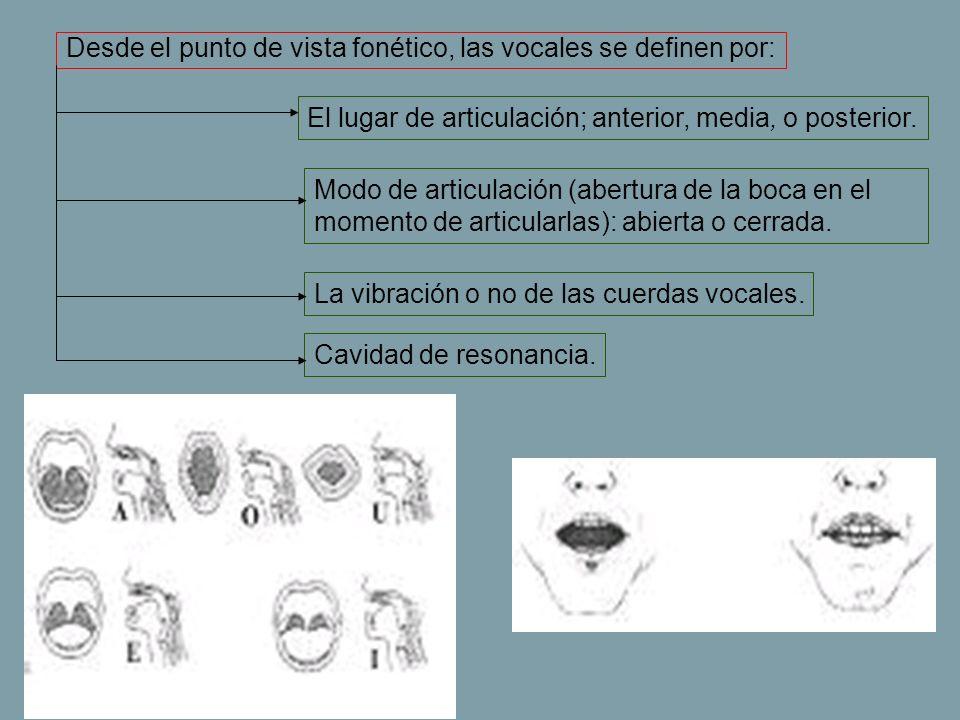 Desde el punto de vista fonético, las vocales se definen por: El lugar de articulación; anterior, media, o posterior. Modo de articulación (abertura d