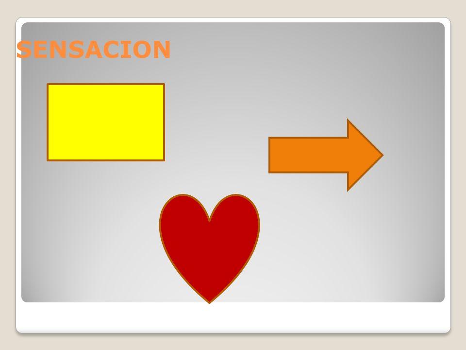 SENSACION La sensación es la respuesta inmediata y directa de los órganos sensoriales ante un estimulo.