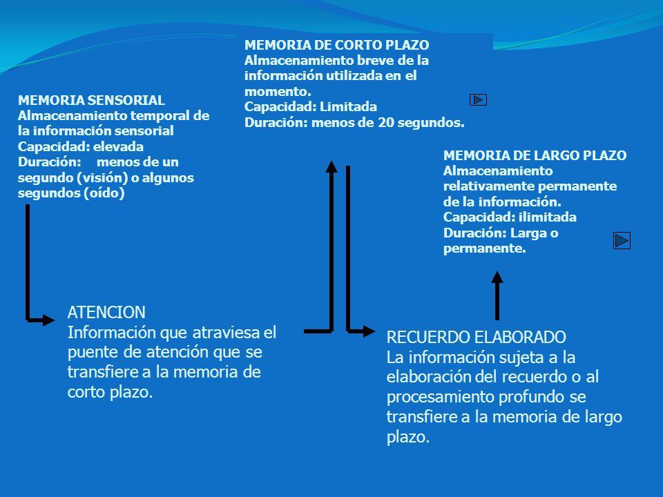 MEMORIA SENSORIAL Almacenamiento temporal de la información sensorial Capacidad: elevada Duración: menos de un segundo (visión) o algunos segundos (oí