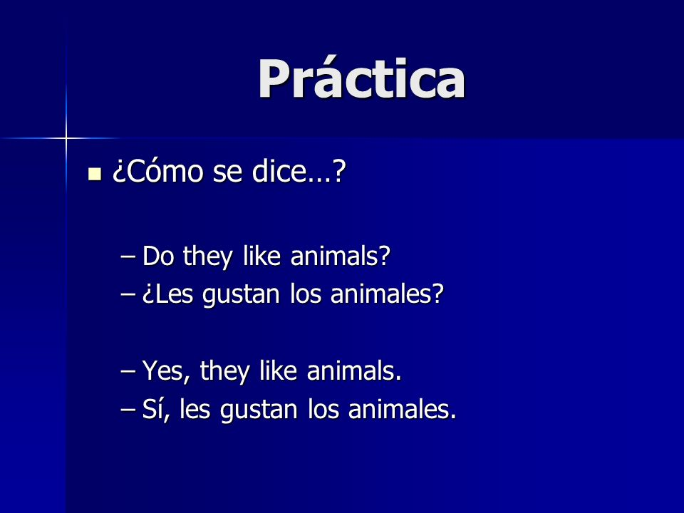 Práctica ¿Cómo se dice…. ¿Cómo se dice…. –Do they like animals.