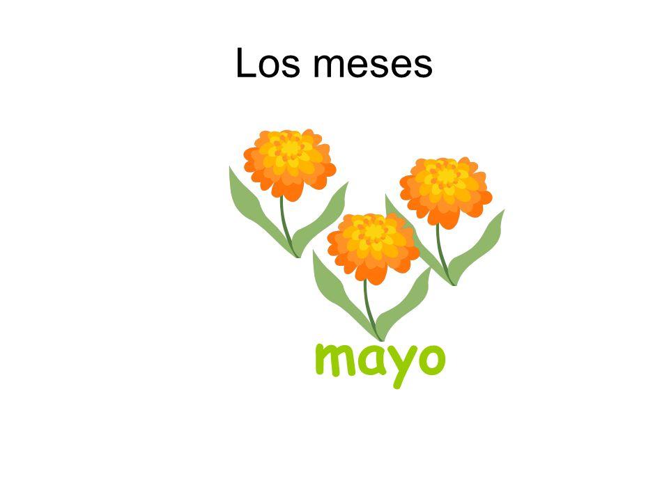 Los meses mayo