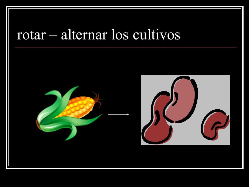 rotar – alternar los cultivos