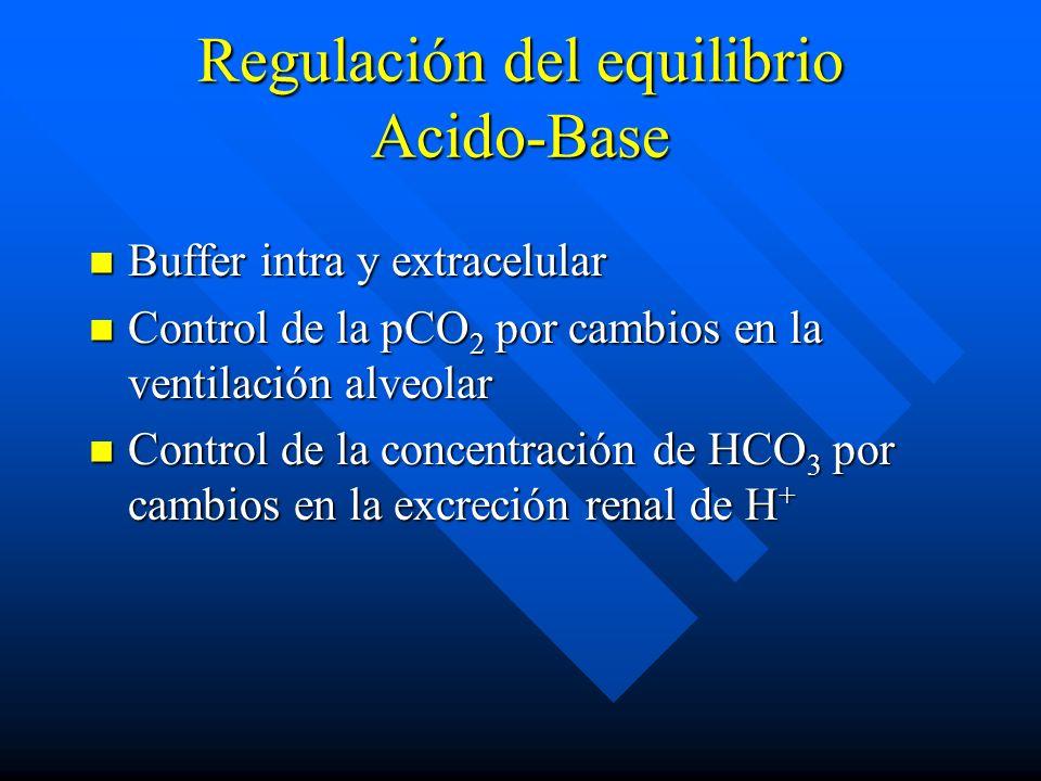 Regulación del equilibrio Acido-Base Buffer intra y extracelular Buffer intra y extracelular Control de la pCO 2 por cambios en la ventilación alveolar Control de la pCO 2 por cambios en la ventilación alveolar Control de la concentración de HCO 3 por cambios en la excreción renal de H + Control de la concentración de HCO 3 por cambios en la excreción renal de H +