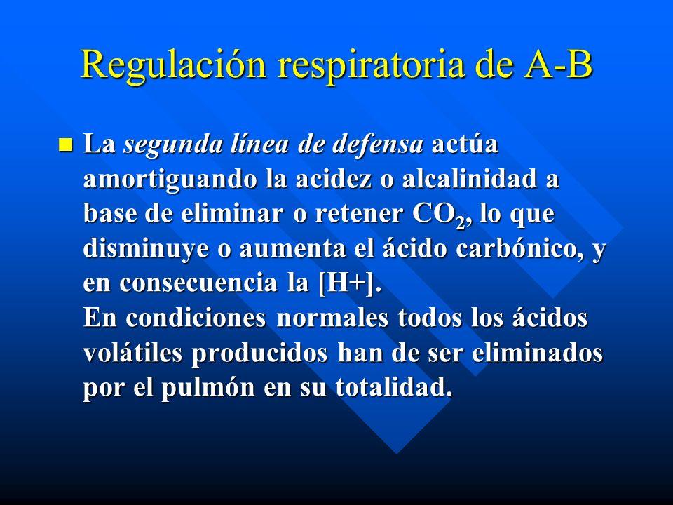 Regulación respiratoria de A-B La segunda línea de defensa actúa amortiguando la acidez o alcalinidad a base de eliminar o retener CO 2, lo que disminuye o aumenta el ácido carbónico, y en consecuencia la [H+].