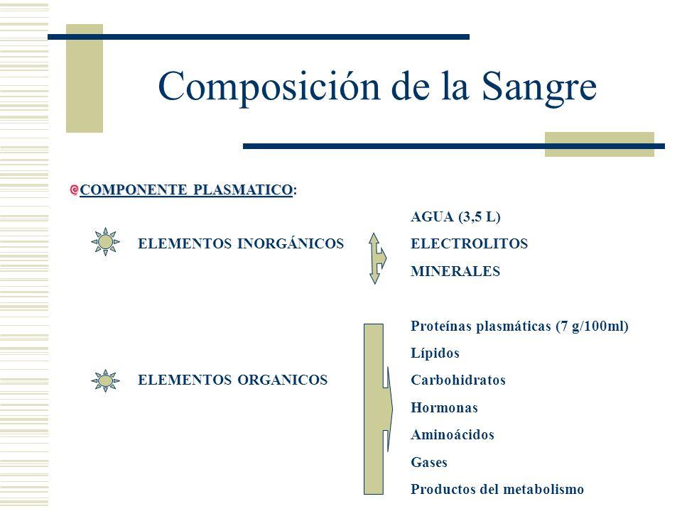 Composición de la Sangre COMPONENTE PLASMATICO COMPONENTE PLASMATICO: AGUA (3,5 L) ELEMENTOS INORGÁNICOSELECTROLITOS MINERALES Proteínas plasmáticas (
