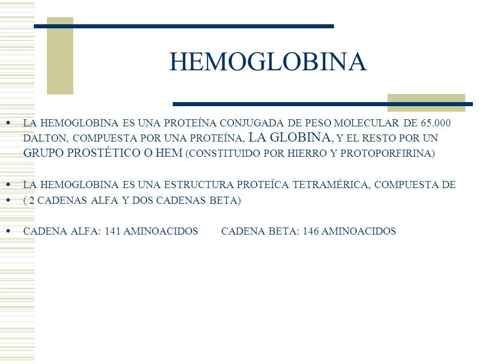 LA HEMOGLOBINA ES UNA PROTEÍNA CONJUGADA DE PESO MOLECULAR DE 65.000 DALTON, COMPUESTA POR UNA PROTEÍNA, LA GLOBINA, Y EL RESTO POR UN GRUPO PROSTÉTIC