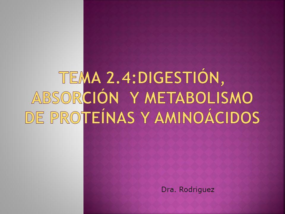Dra. Rodriguez