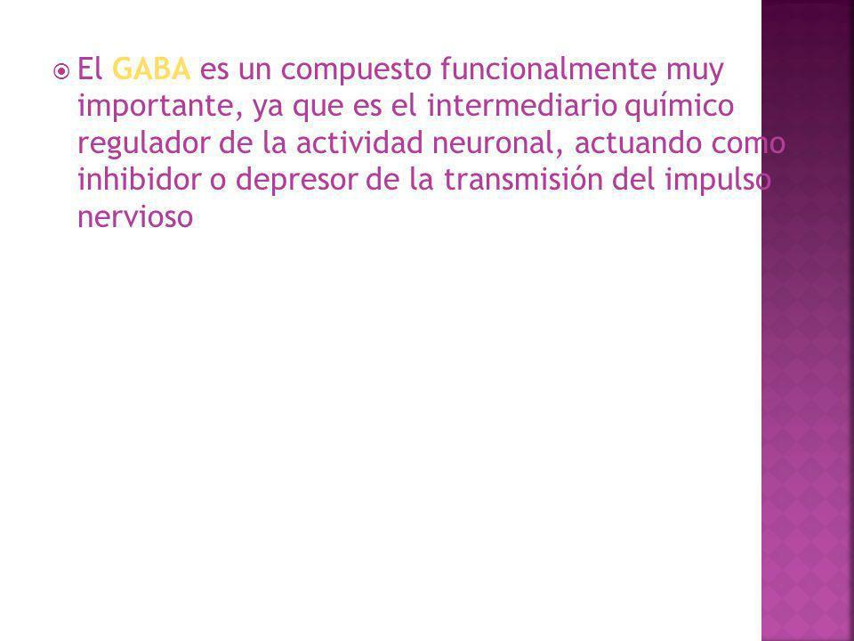 El GABA es un compuesto funcionalmente muy importante, ya que es el intermediario químico regulador de la actividad neuronal, actuando como inhibidor