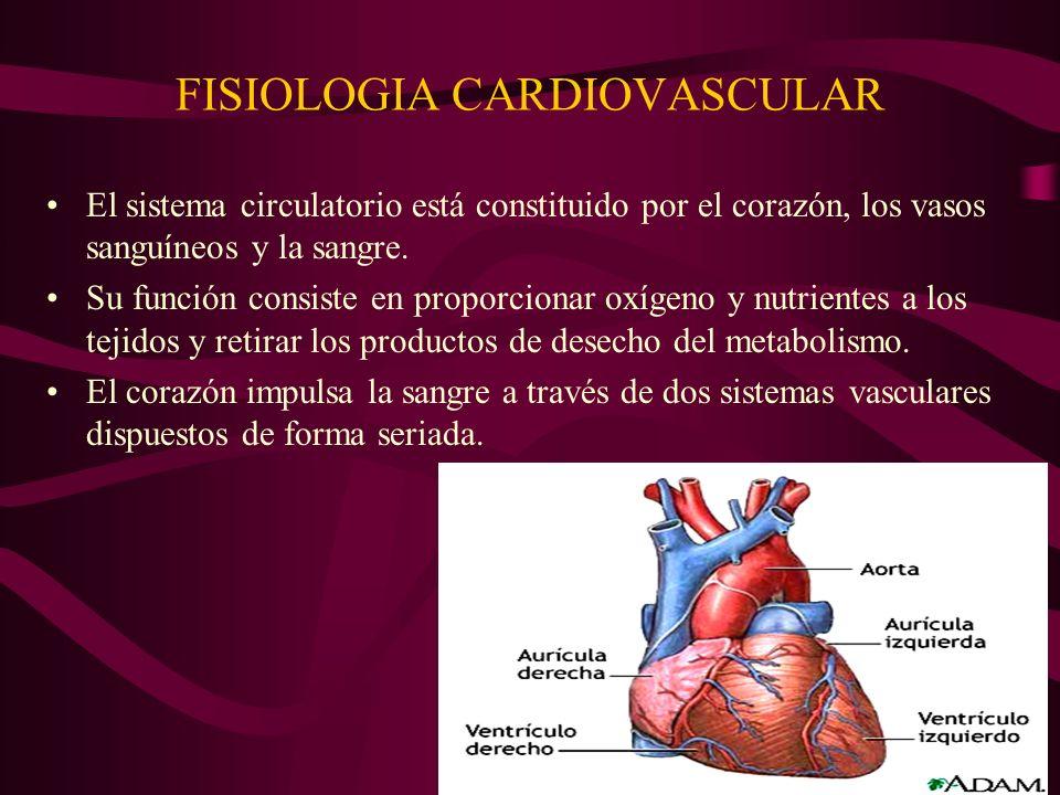 FISIOLOGIA CARDIOVASCULAR El sistema circulatorio está constituido por el corazón, los vasos sanguíneos y la sangre. Su función consiste en proporcion