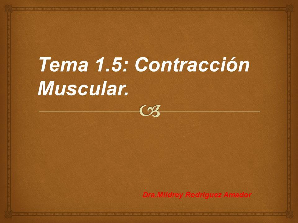 Tema 1.5: Contracción Muscular. Dra.Mildrey Rodriguez Amador