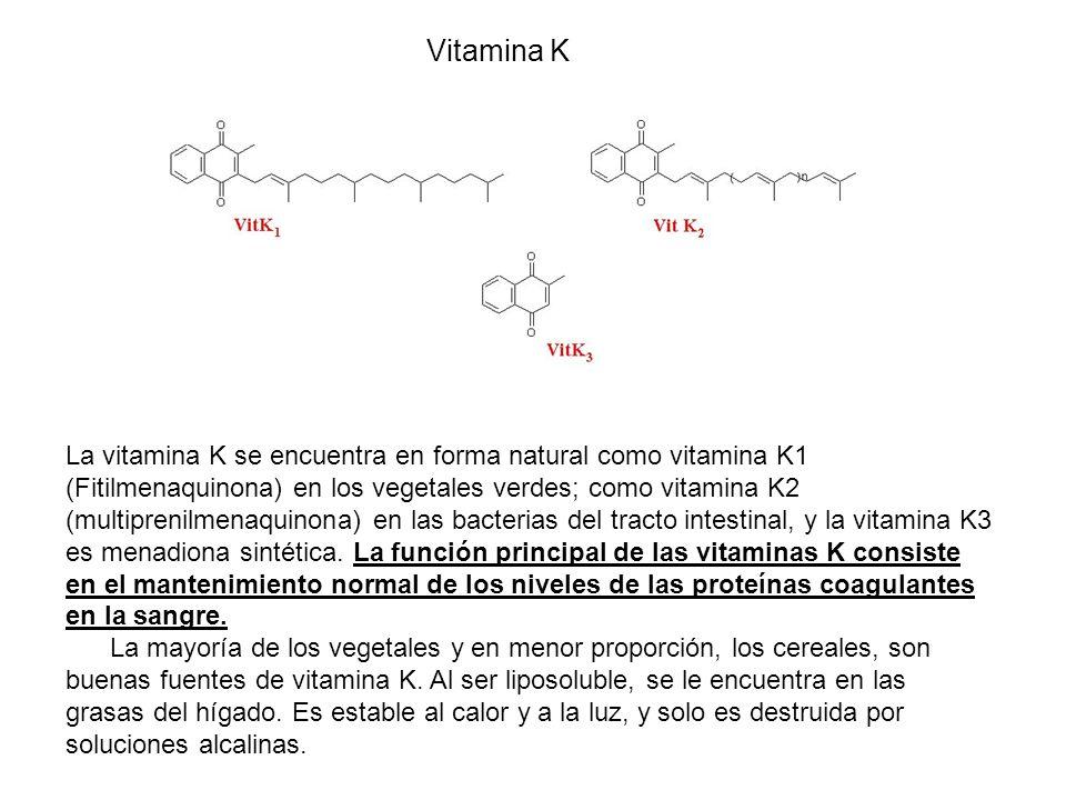 Vitamina K La vitamina K se encuentra en forma natural como vitamina K1 (Fitilmenaquinona) en los vegetales verdes; como vitamina K2 (multiprenilmenaquinona) en las bacterias del tracto intestinal, y la vitamina K3 es menadiona sintética.
