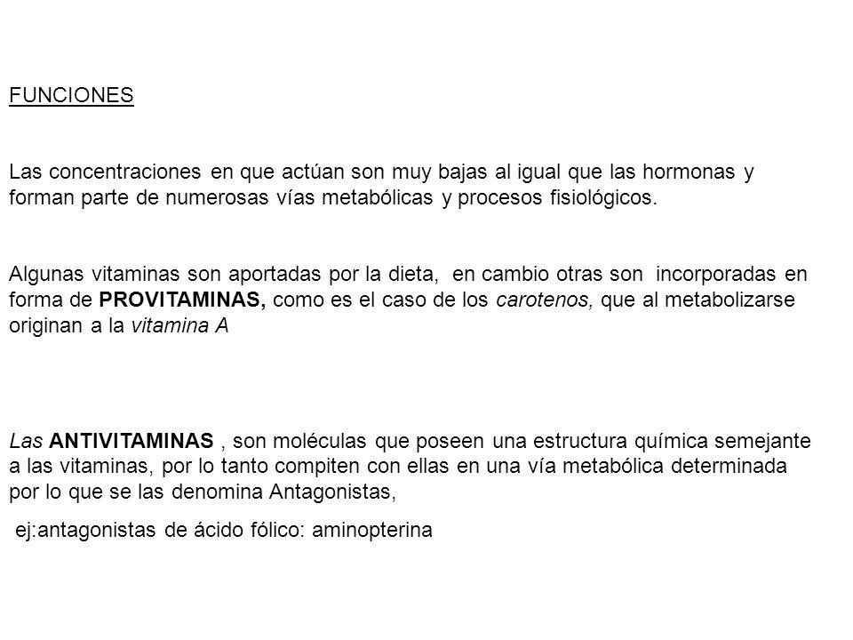 VITAMINA E También llamada tocoferol, en animales de experimentación ayuda contra la infertilidad en ratas.