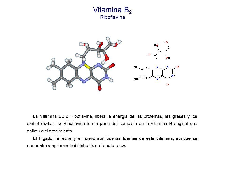 Vitamina B 2 Riboflavina La Vitamina B2 o Riboflavina, libera la energía de las proteínas, las grasas y los carbohidratos.
