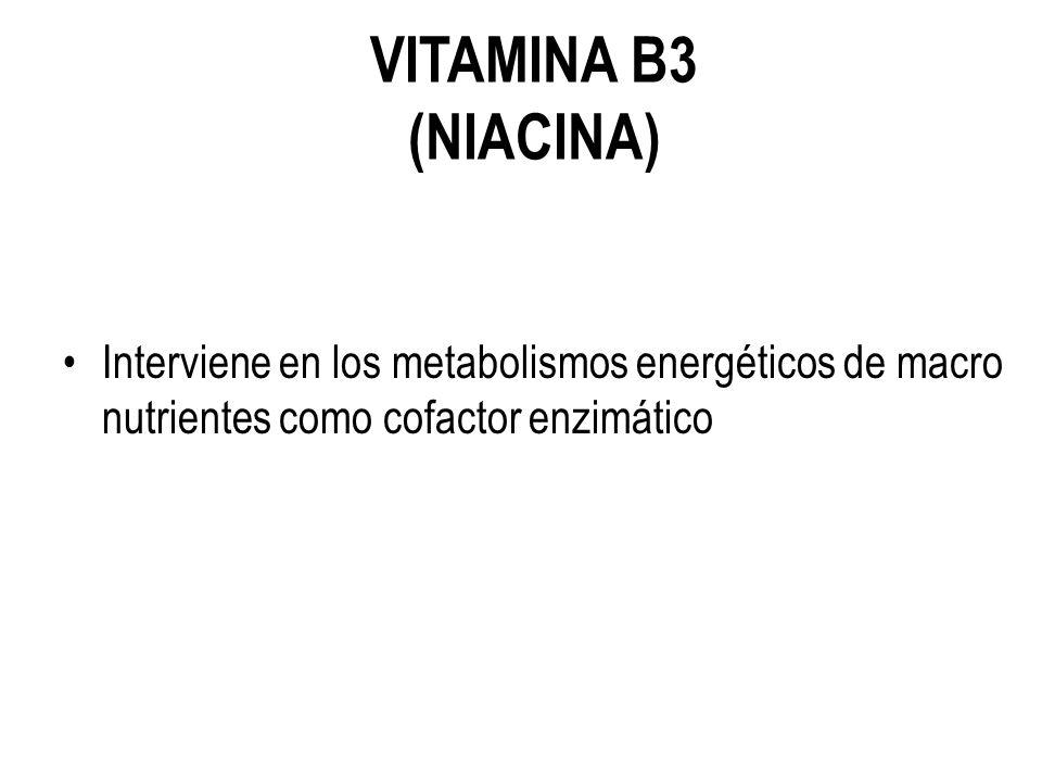 VITAMINA B3 (NIACINA) Interviene en los metabolismos energéticos de macro nutrientes como cofactor enzimático