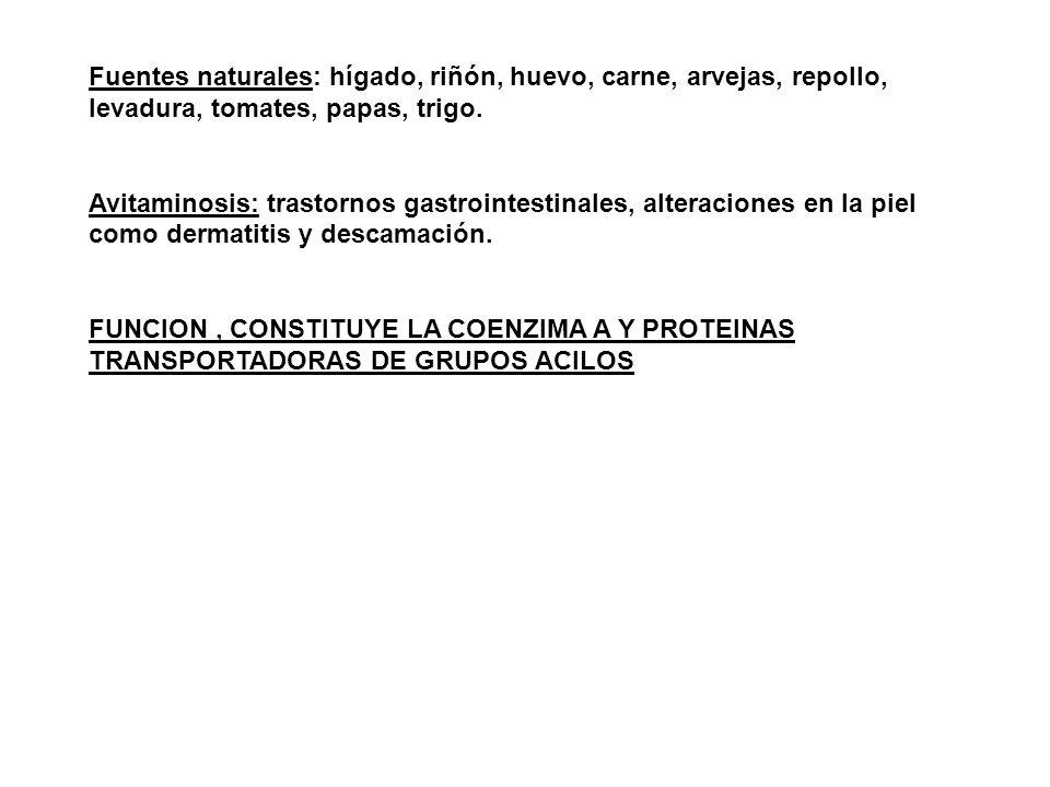 Fuentes naturales: hígado, riñón, huevo, carne, arvejas, repollo, levadura, tomates, papas, trigo.