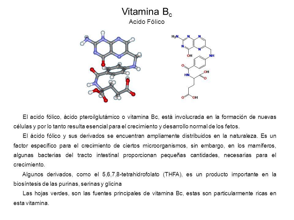 El acido fólico, ácido pteroilglutámico o vitamina Bc, está involucrada en la formación de nuevas células y por lo tanto resulta esencial para el crecimiento y desarrollo normal de los fetos.