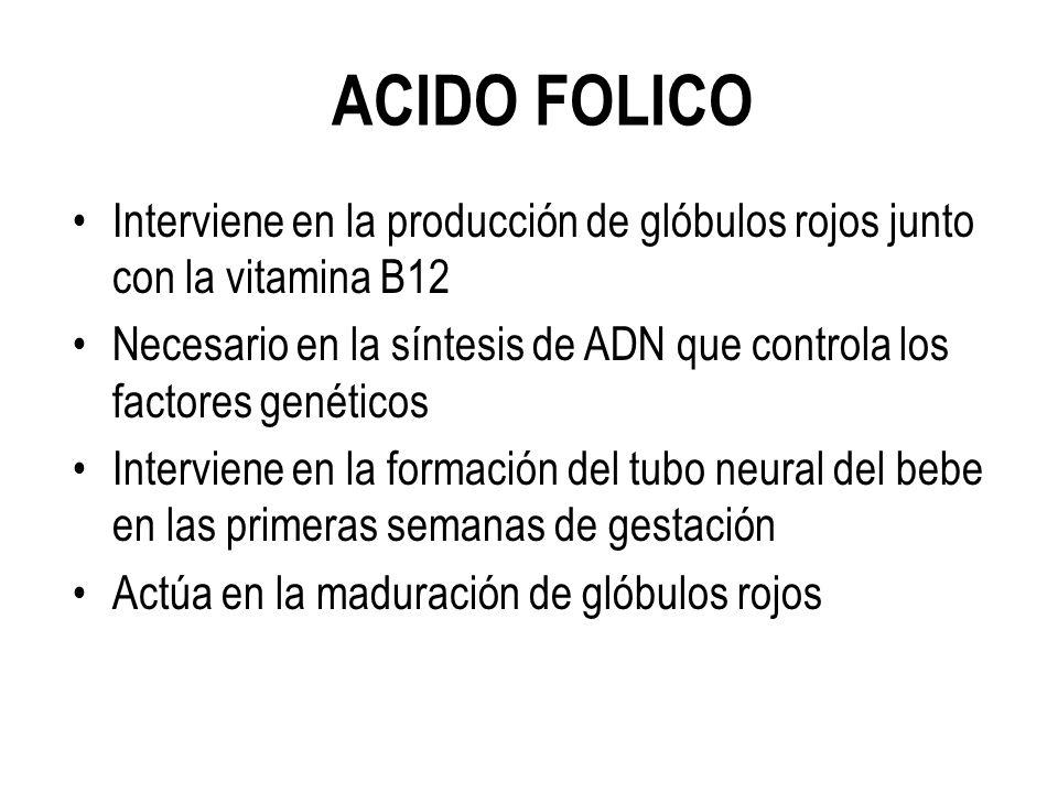 ACIDO FOLICO Interviene en la producción de glóbulos rojos junto con la vitamina B12 Necesario en la síntesis de ADN que controla los factores genéticos Interviene en la formación del tubo neural del bebe en las primeras semanas de gestación Actúa en la maduración de glóbulos rojos