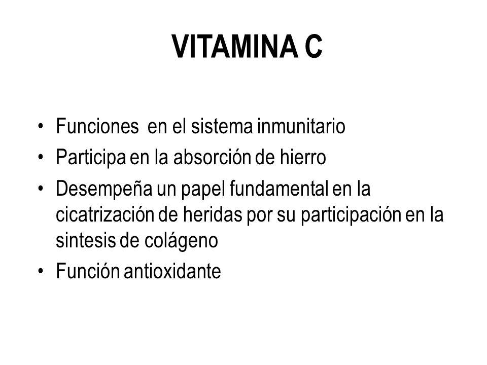 VITAMINA C Funciones en el sistema inmunitario Participa en la absorción de hierro Desempeña un papel fundamental en la cicatrización de heridas por su participación en la sintesis de colágeno Función antioxidante