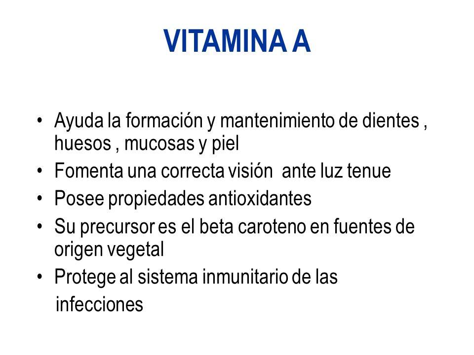 VITAMINA A Ayuda la formación y mantenimiento de dientes, huesos, mucosas y piel Fomenta una correcta visión ante luz tenue Posee propiedades antioxidantes Su precursor es el beta caroteno en fuentes de origen vegetal Protege al sistema inmunitario de las infecciones